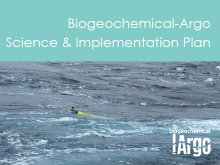 The Rationale, Design, and Implementation Plan for Biogeochemical-Argo